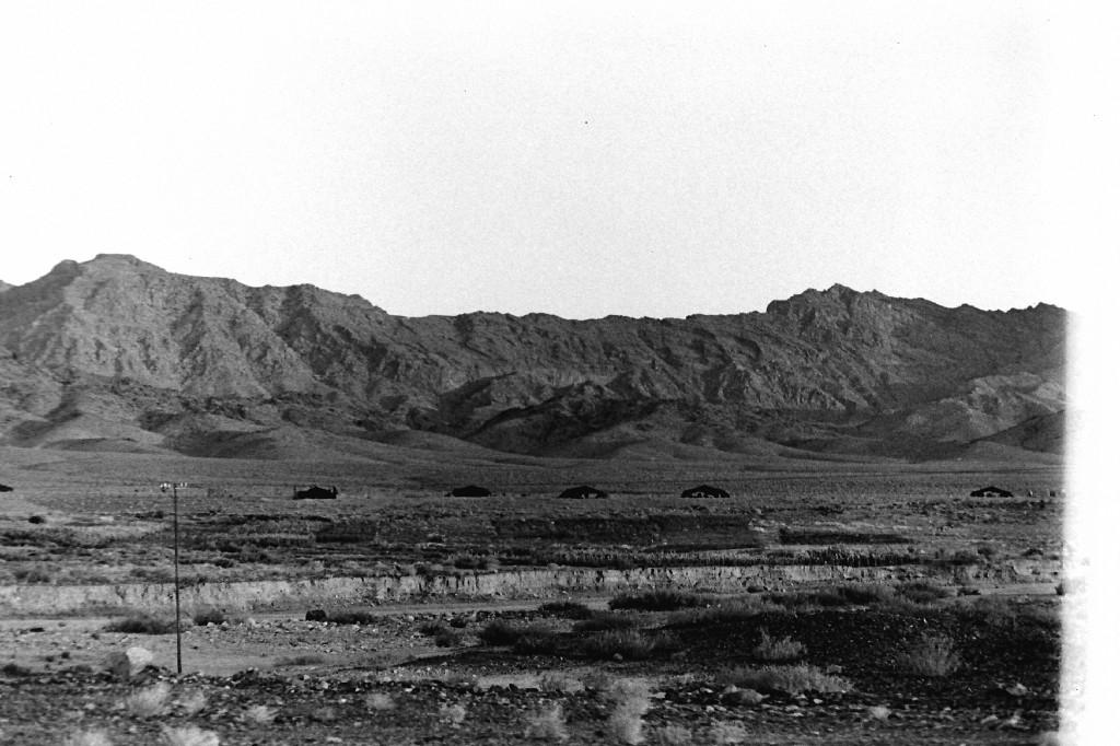 Desert_dwellers