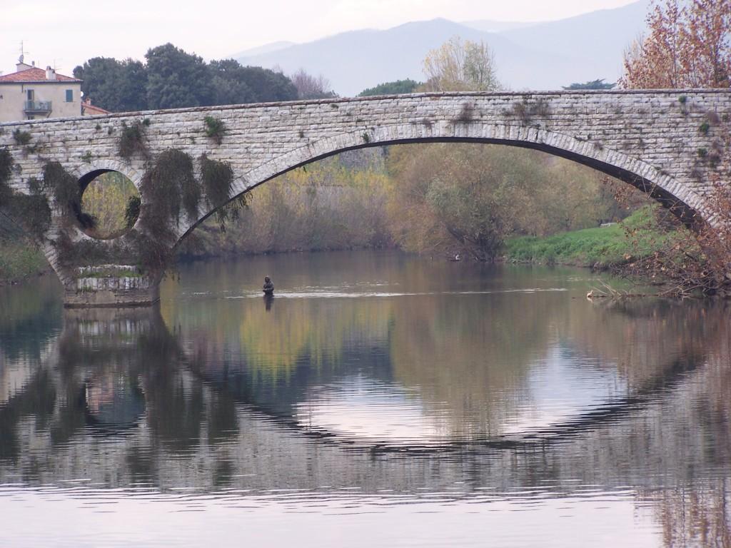 100_4130 Prato - Fiume Bisenzio